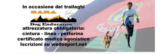 Trailaghi & Dog Endurance